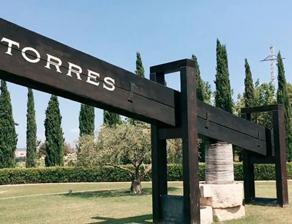 Enoturismo y cultura con Spain Luxury Cars y Bodegas Torres
